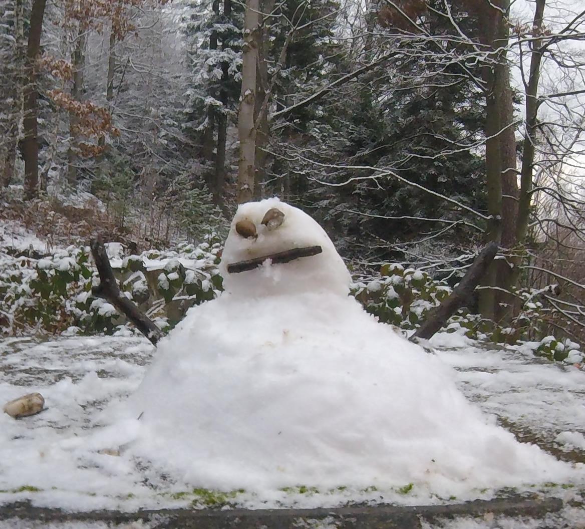 petit bonhomme de neige dans le bois